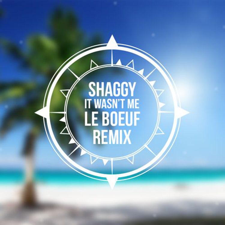 Shaggy – It Wasn't Me (Le Boeuf Remix)