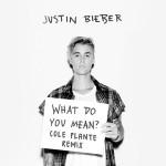 Justin Bieber – What Do You Mean? (Cole Plante Remix)