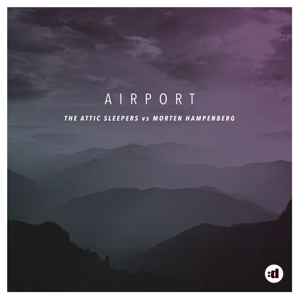 attic sleepers-airport